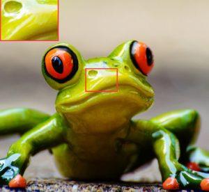 FGfrog