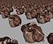 toadArmy